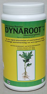 Dynaroot rooting hormone powder